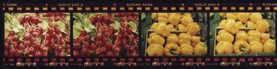 Processing Images C 41 Color Negative Film